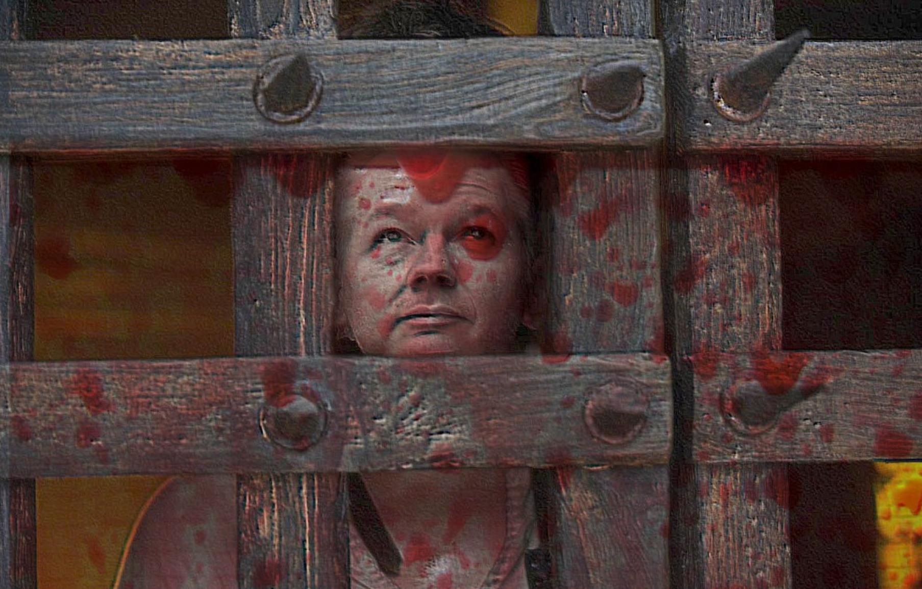 L'évasion de Julian Assange, concours d'illustration sur FreakingNews.com