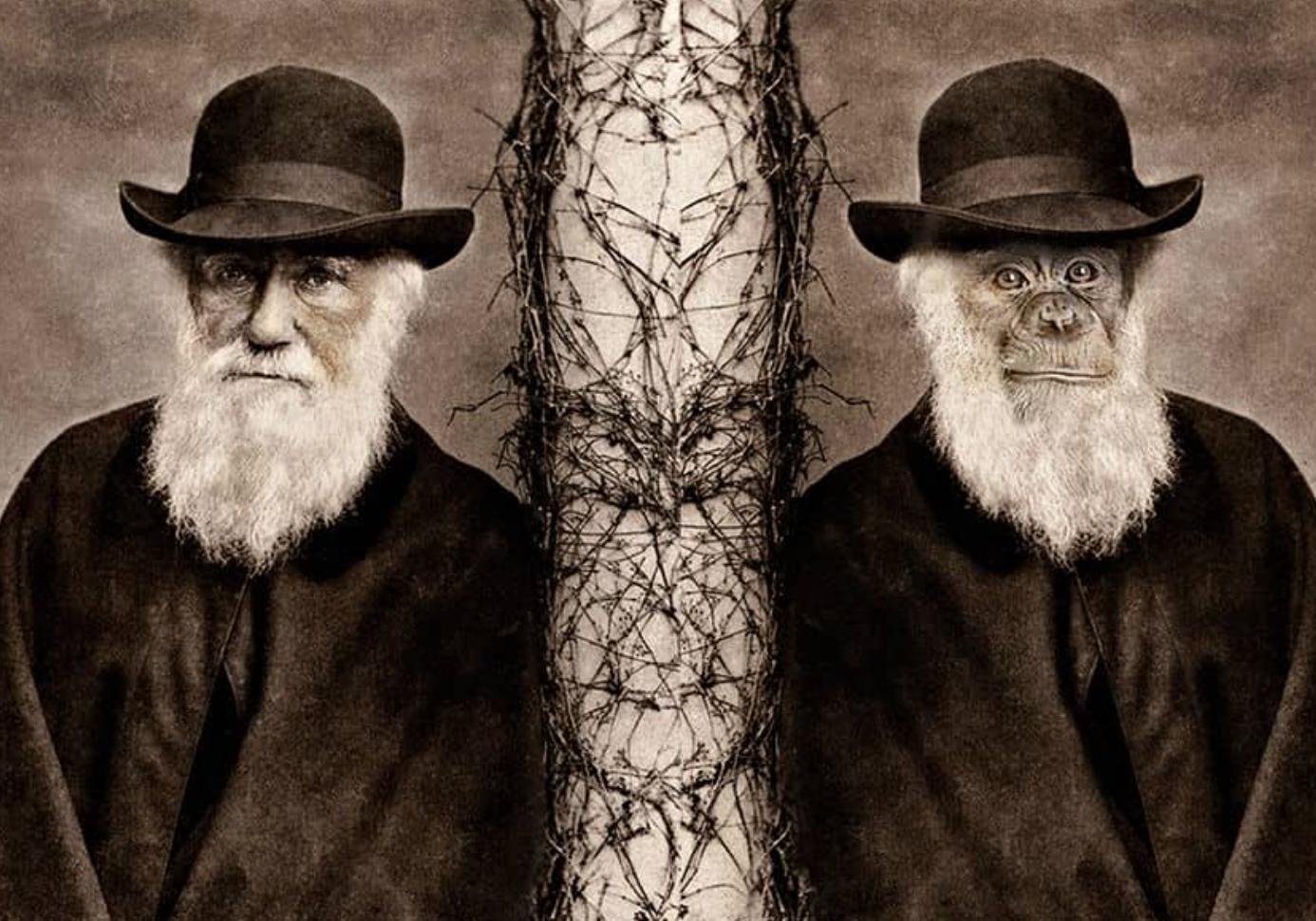Prix Darwin du journalisme