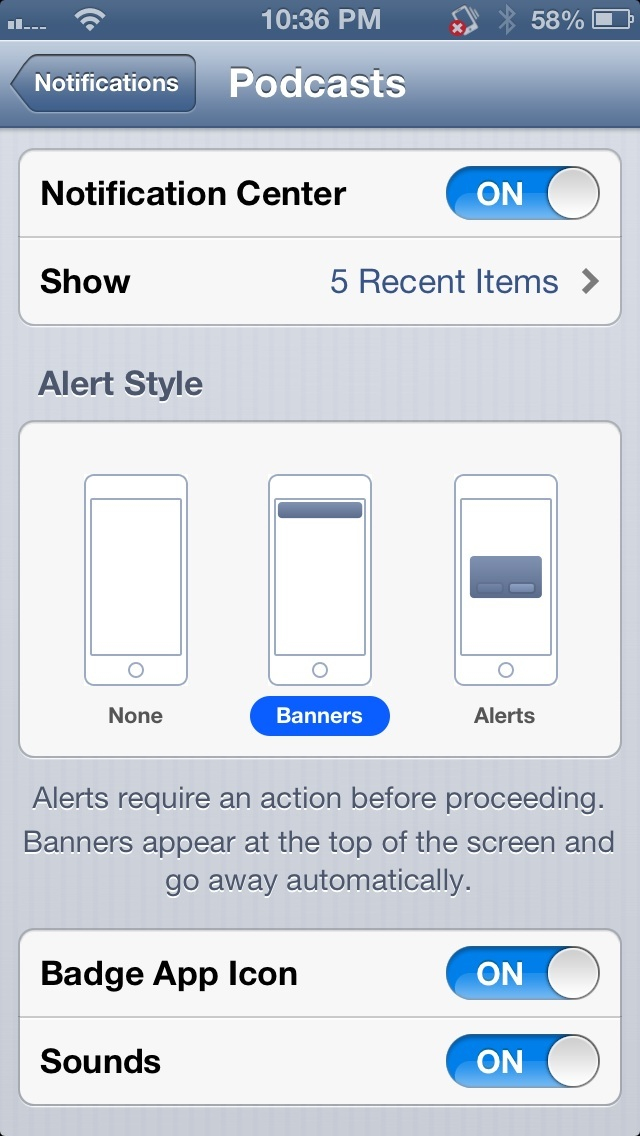 Example of an app's entry in Settings -> Notifications. This app has all of the notification services enabled.