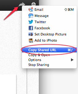 Skitch Sharing Options