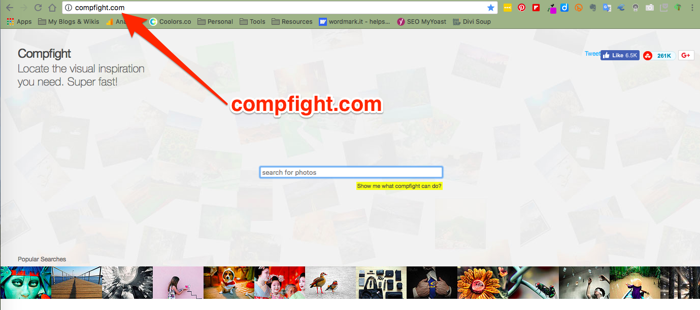 Image search for butterfly | Compfight | A Flickr Search Tool