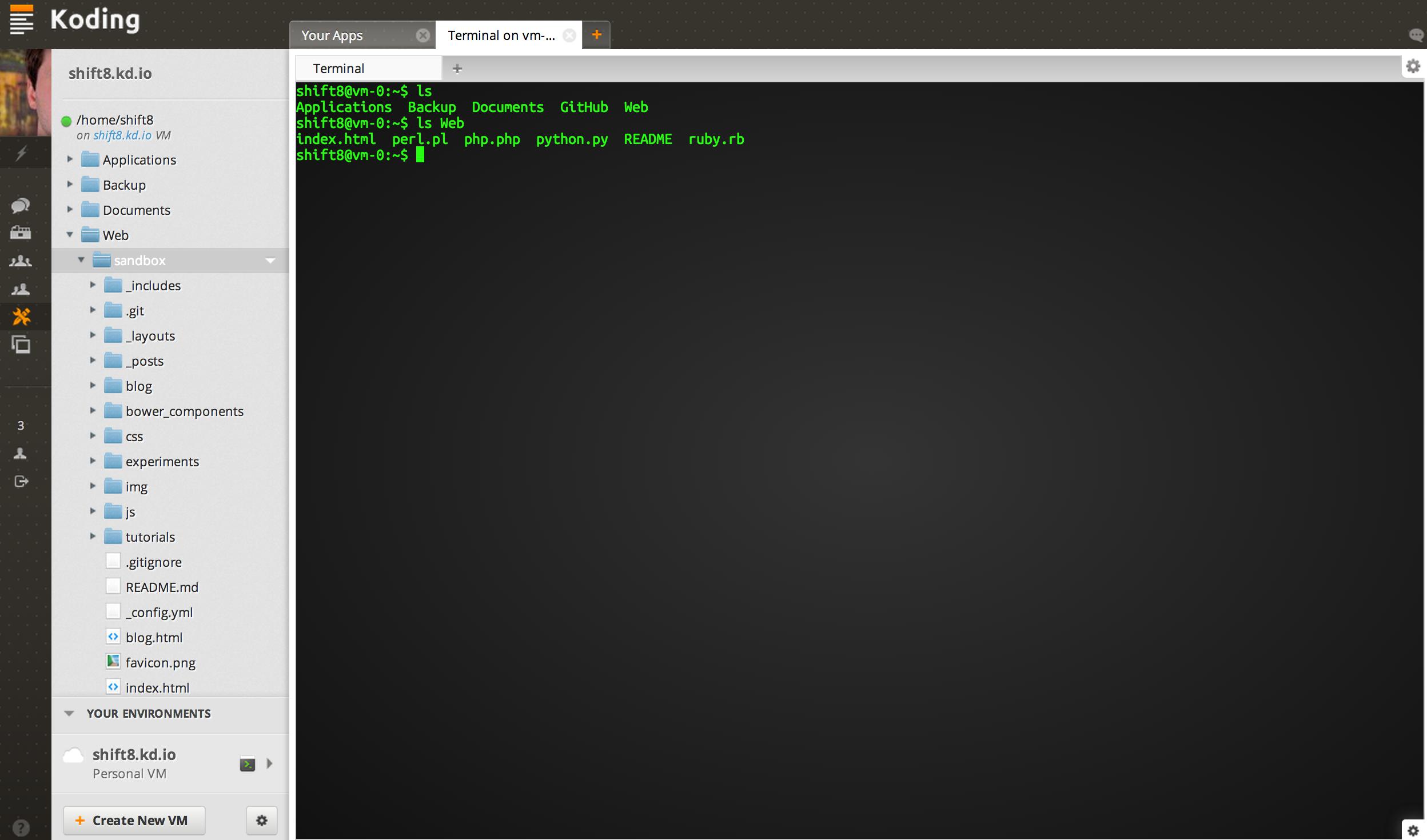 Koding terminal